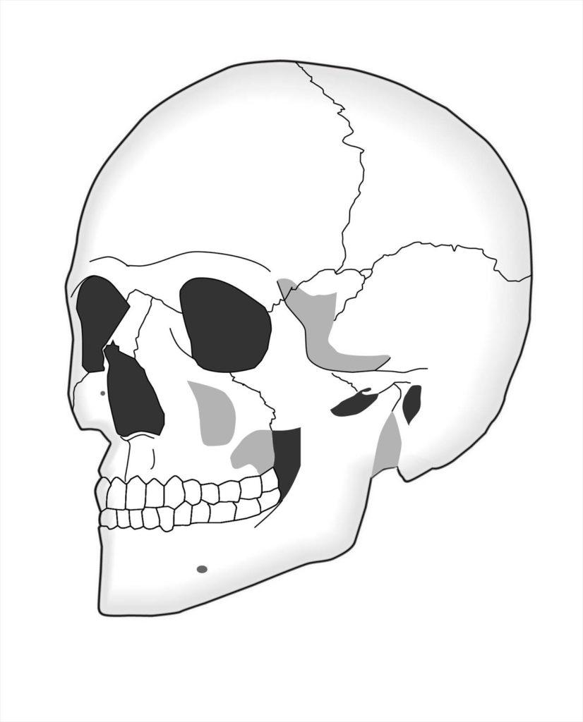 ヘッドスパとは??ヘッドスパの種類から効果まで徹底解説
